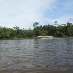 Sailing down the Amazon River